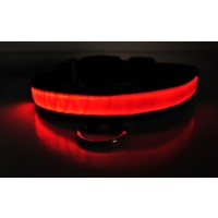 Отзыв на Ошейник BUYINCOINS New Pet Dog Cat LED Light Flashing Safety Nylon Collar